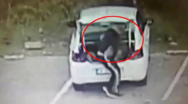 Koca Köpeği Arabanın Bagajına Koyarak Çalan Hırsız Kamerada