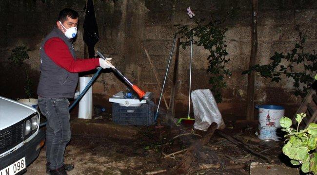 Belediyeden böceklerin istila ettiği mahallede ilaçlama