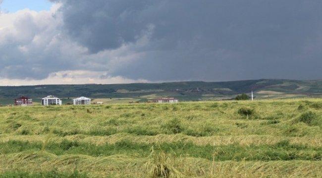 Akyurt'ta ekili alanlar zarar gördü