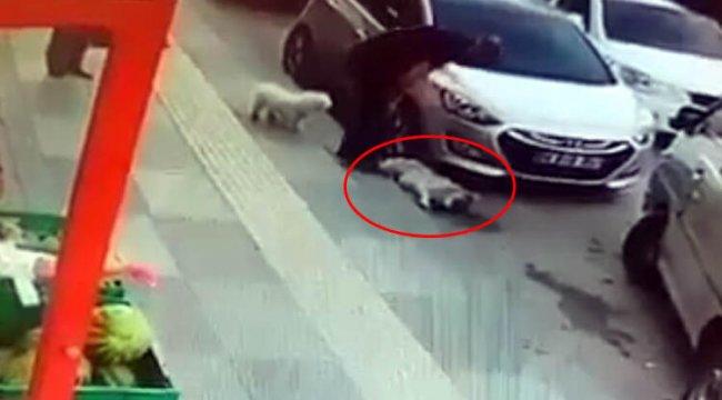 Ankara'da şoke eden görüntü! Vicdansız!