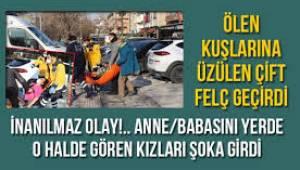 Ankara'da şoke eden olay! Kuşları ölen çift, peş peşe felç geçirdi, anne ve babasını öyle gören kızları bayıldı
